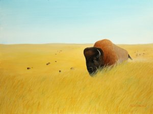 Bison | 18-x-24 acrylic on gallery wrapped canvas